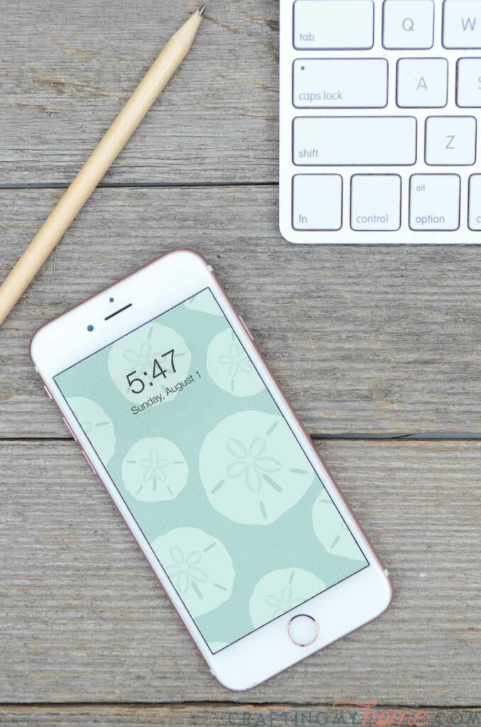 White iphone with sea green sand dollar design on the screen.