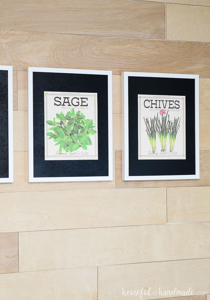 sage and chives vintage herb prints on wall