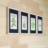 Four vintage inspired herb prints made to look like vintage seed packets in frames.