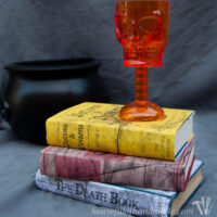 Three books covered in Halloween book covers with different spooky titles and a skull goblet on top.