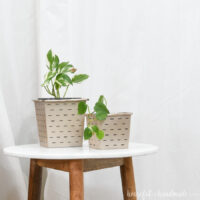 Paper farmhouse flower pots holding plants with cheap planting containers inside them.