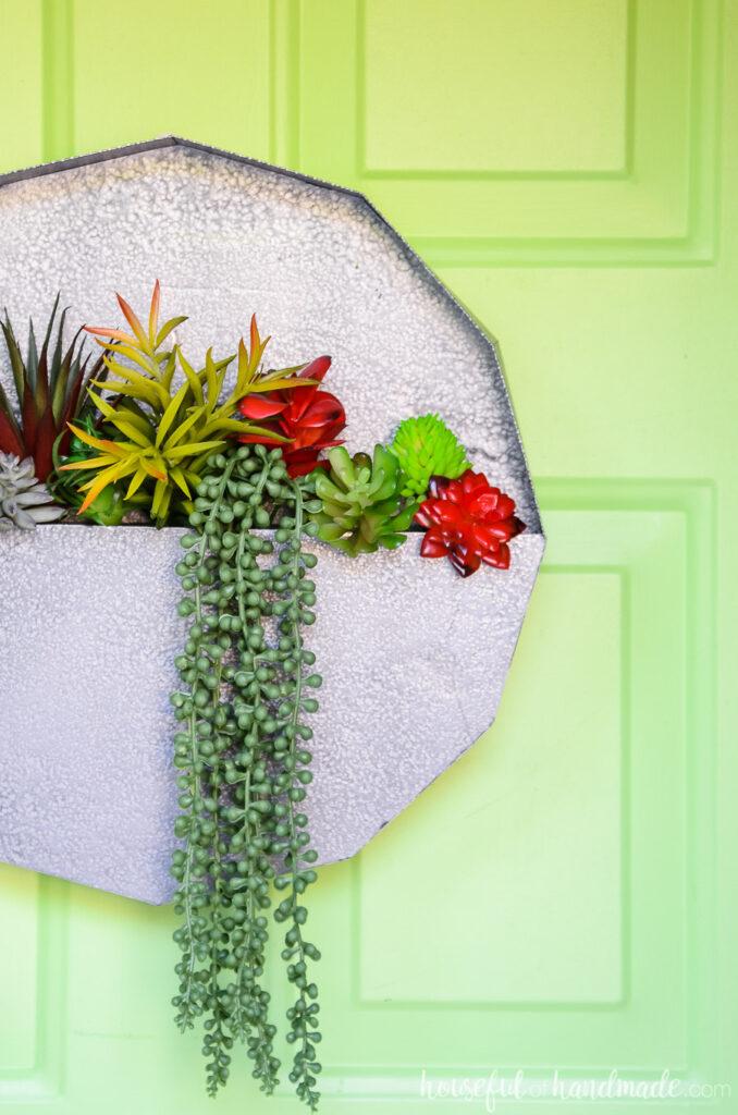 Succulent wall planter hanging on green painted door.