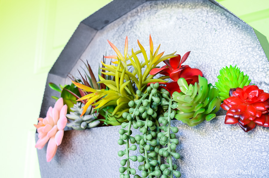 paper wall planter with close up of succulents on green door