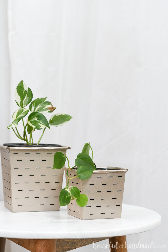 Two spray painted paper buckets holding house plants.
