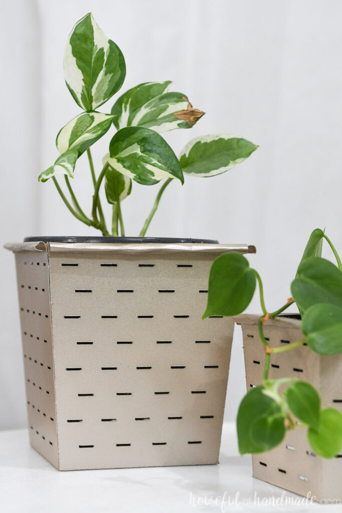 Close-up view of the larger farmhouse flower pot with a striped leaf plant inside.