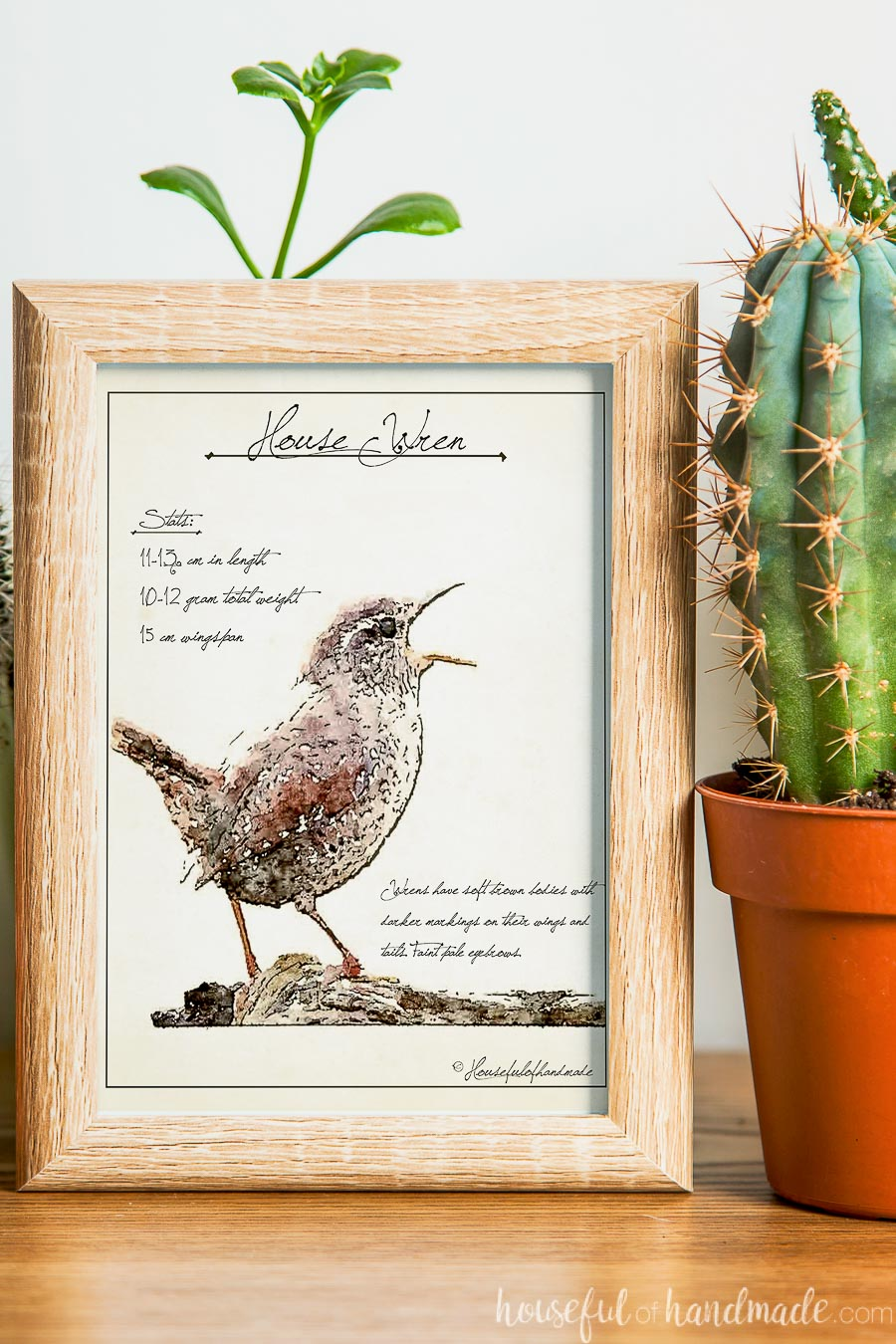 Small frame with a bird sketch art print of a wren in it.