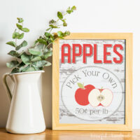Beautiful free printable apple picking sign next to a farmhouse pitcher of greenery.