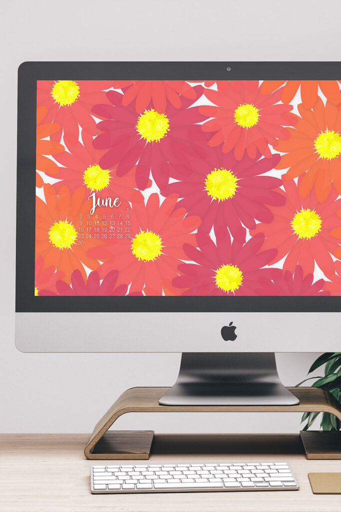 iMac computer with pink and orange daisy digital wallpaper with a calendar on the desktop.