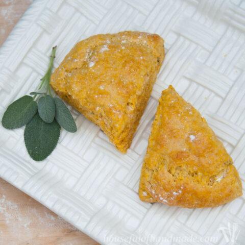 Pumpkin Sage Scones on counter